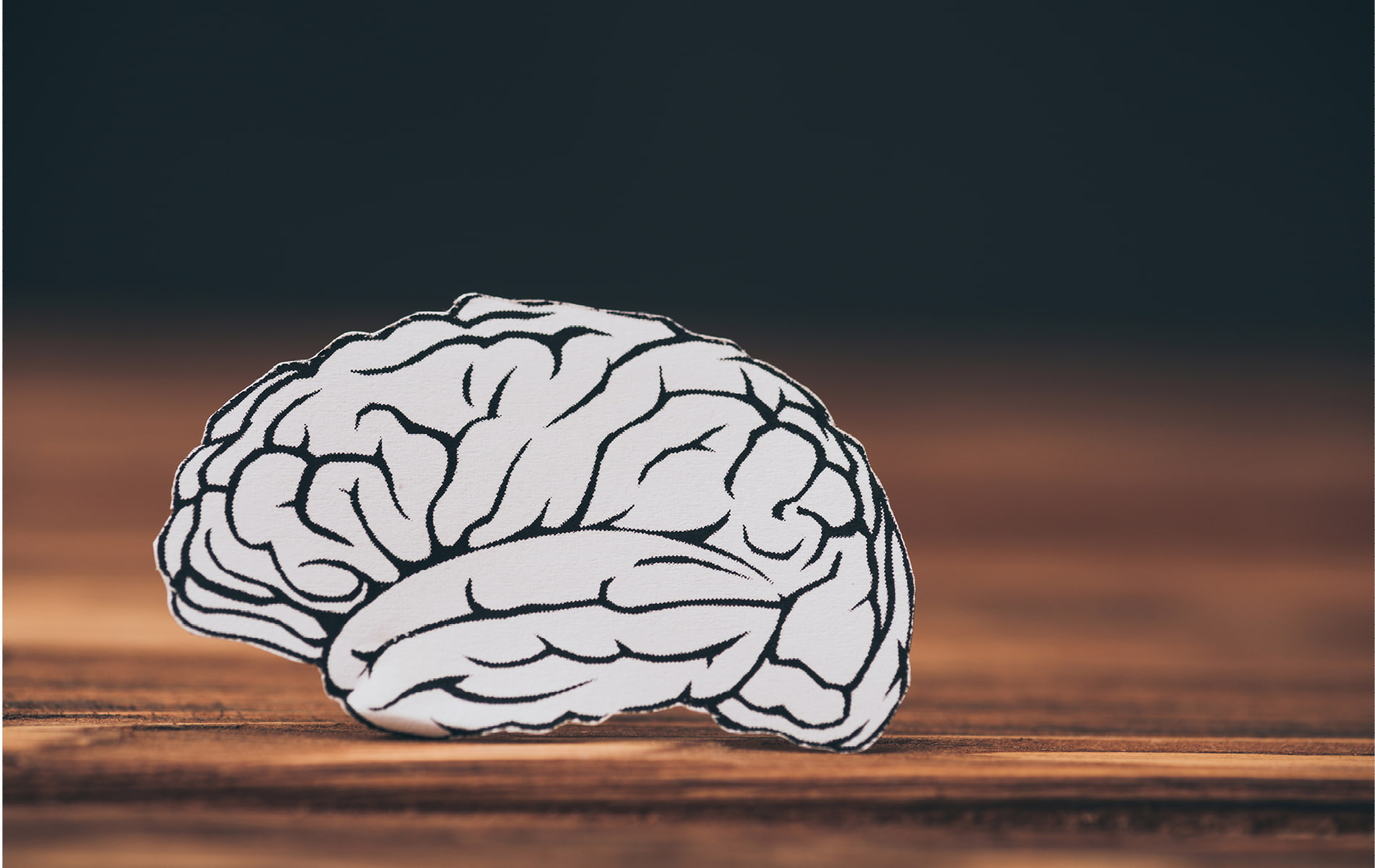 Zeichnung eines Gehirns auf einer Holzunterlage