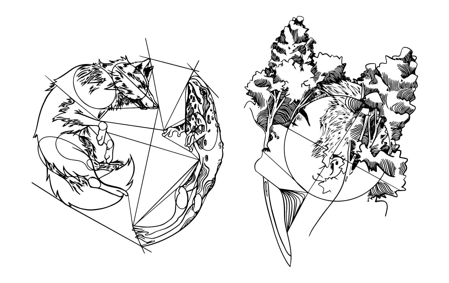 Skizze von Fuchs, Frosch, Gesicht und Bäume