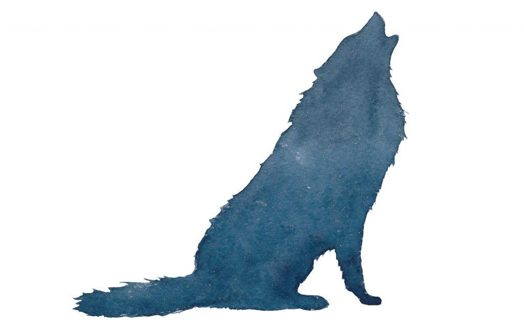 Skizze eines heulenden Wolfs in blau